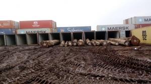 PACHYLOBA Containers - 非洲厚叶缅茄木DOUK LOG - 西非紫檀木