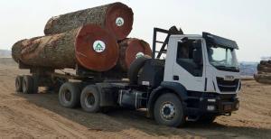 MUKULUNGU MTC - 刚果铁木
